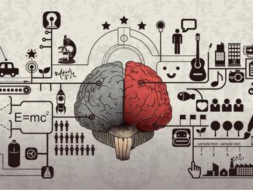 brain-feat